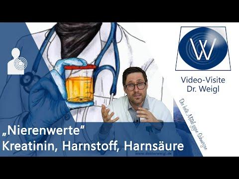Erhöhte Nierenwerte in Blut & Urin 🔎 Kreatinin, Harnsäure, Harnstoff & Cystatin C verbessern