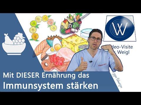 """Mit """"richtiger"""" Ernährung das Immunsystem stärken - klappt das? Tipps zum Schutz vor Infektionen ✅"""