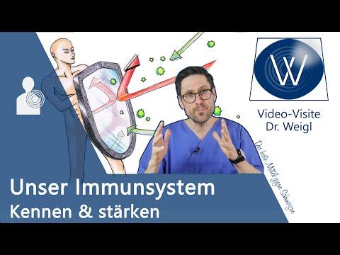 Mein Immunsystem: Wie schützt es mich vor dem Coronavirus? 😷 Das eigene Abwehrsystem verstehen ✅