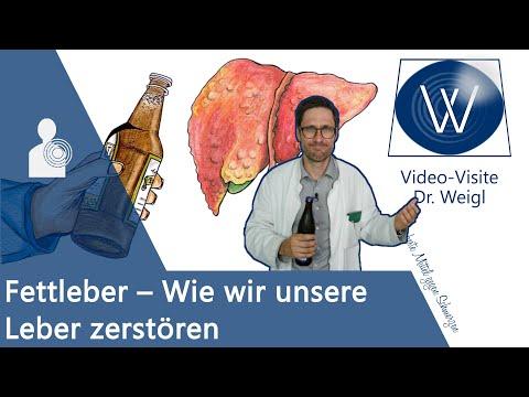Fettleber & Leberschaden durch Alkohol, falsche Ernährung, Medikamente 🍻🍔💊 erkennen & behandeln