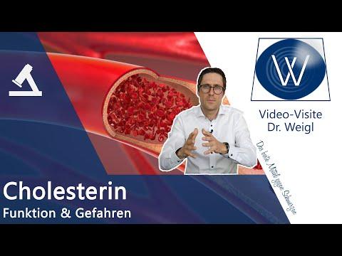 Cholesterin HDL & LDL - Kein Gift aber lebensnotwendig und trotzdem gefährlich: Hypercholesterinämie