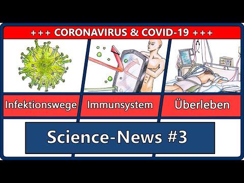 Covid: Aerosole & Abstand   Coronavirus & Immunsystem   Sterblichkeit beatmeter Covid-19 Patienten