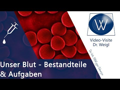 Wozu brauchen wir Blut? Aufgaben & Funktionen rote Blutkörperchen, Thrombozyten & Blutplasma