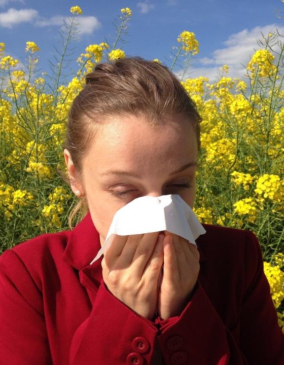 12 Millionen Deutsche leiden unter Pollenallergie