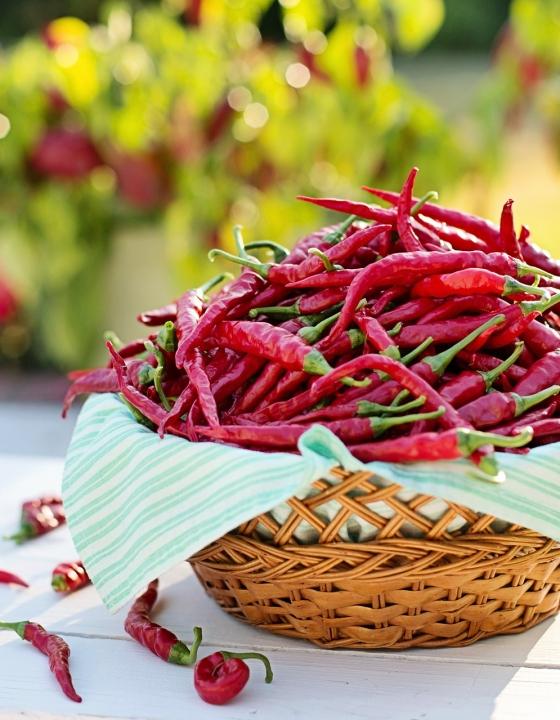 Pestizid-Spuren in roten Chilis gefunden