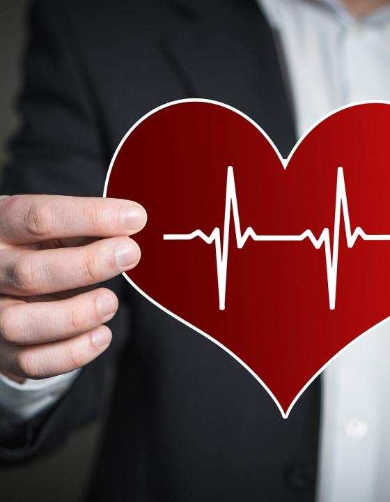 Potenzsteigerndes Mittel auch gut für das Herz
