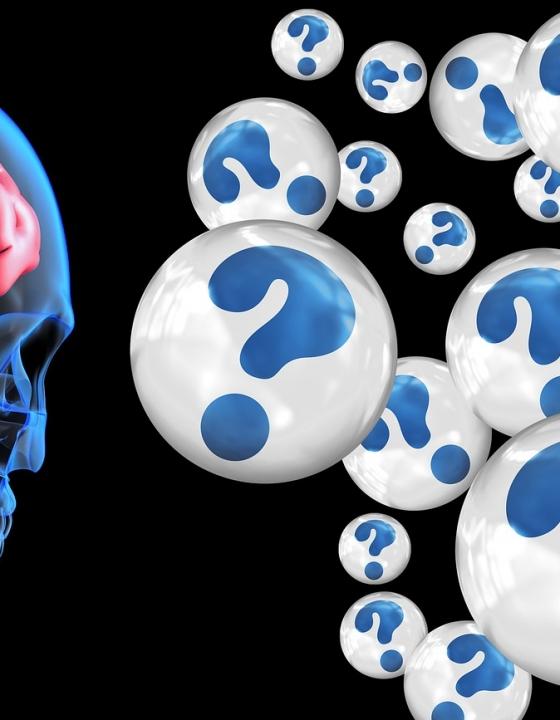Frühe Alzheimererkrankung durch zu hohe Cholesterinwerte