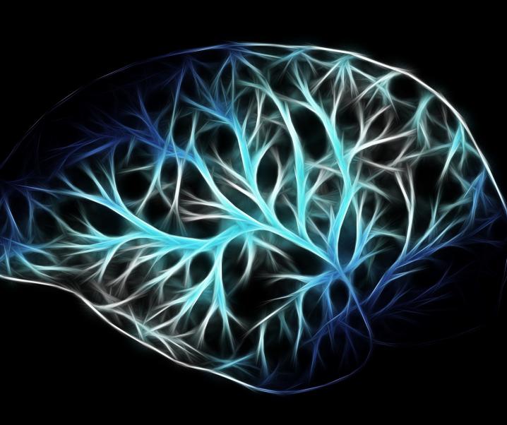 Theorie zur Entstehung von Parkinson scheint hinfällig