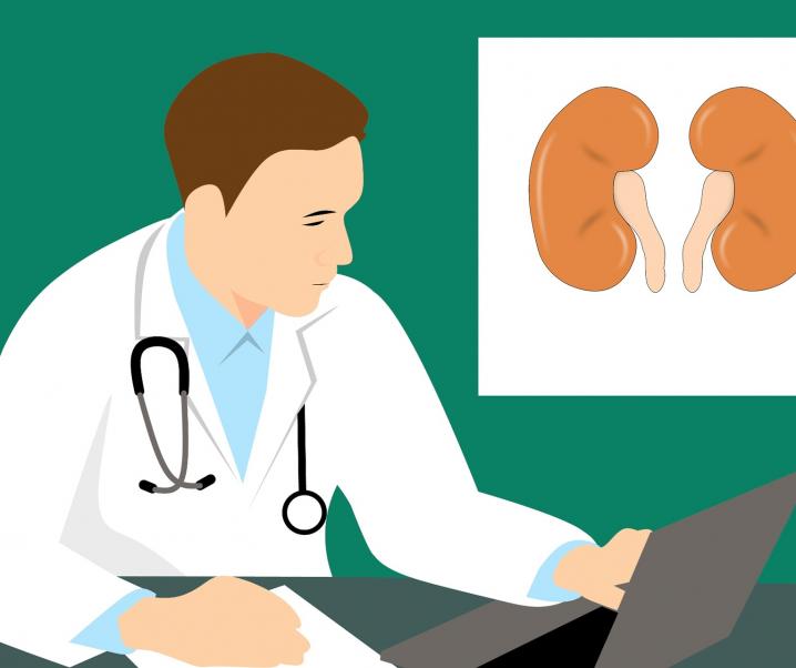 Nierenschwäche bringt viele Begleiterkrankungen mit sich