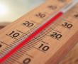Fleischfreie Tage können Diabetes vorbeugen