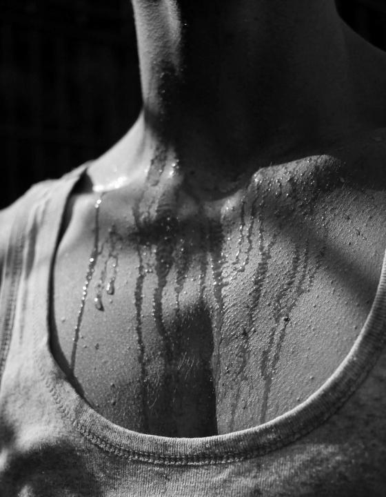 Zusammenhang zwischen Körpergröße und Schweißabgabe aufgedeckt