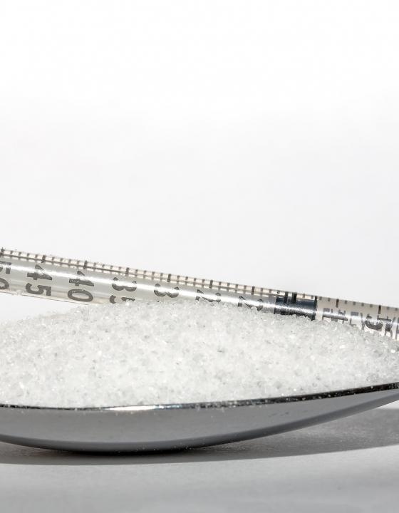 Beta-Zellen der Bauchspeicheldrüse als mögliche Ursache von Insulinresistenz entlarvt