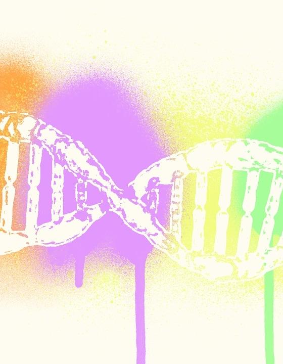 Erfolgreiche HIV-Heilung durch Herausschneiden der DNA-Sequenz