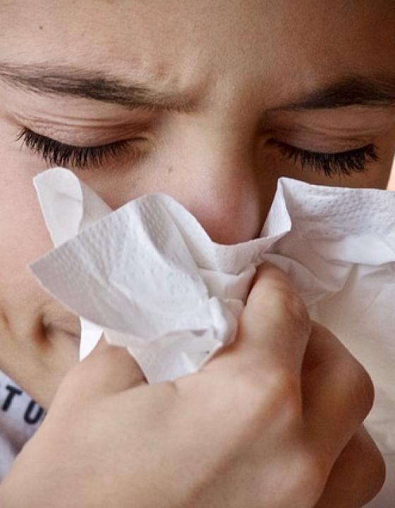 Wenn die Sommergrippe im Anmarsch ist