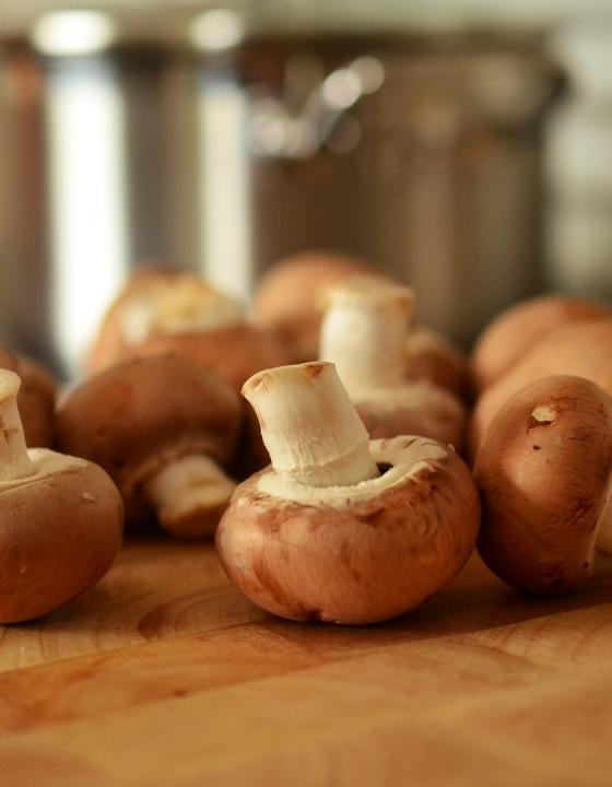 Verzehr von Pilzen kann Prostatakrebs vorbeugen