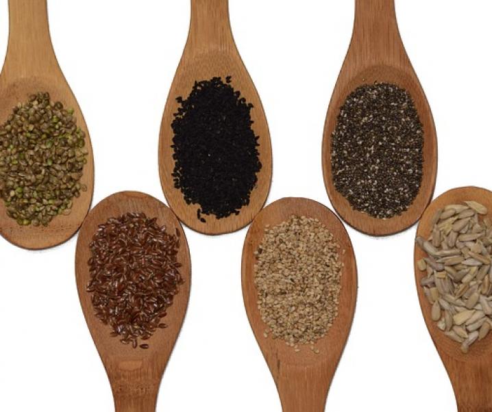 Klein, aber fein: Wie Leinsamen und Flohsamenschalen die Darmgesundheit stärken!