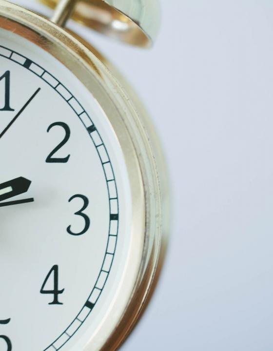 Steuert die Uhr unser Immunsystem?