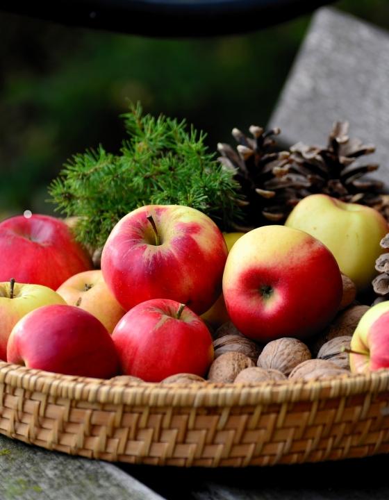 Endlich ein gesunder Darm: Diese Nahrungsmittel stärken das Mikrobiom