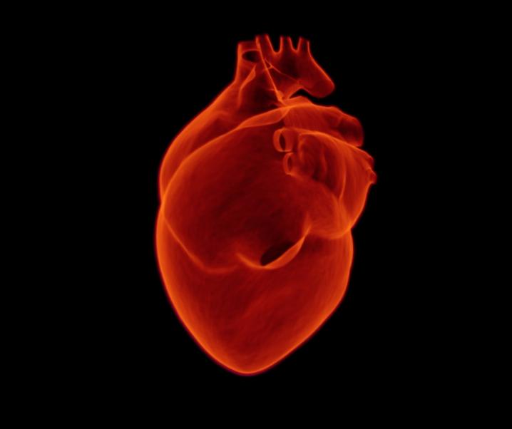 Wegen diesem kleinen Unterschied sterben viele Frauen an einem Herzinfarkt