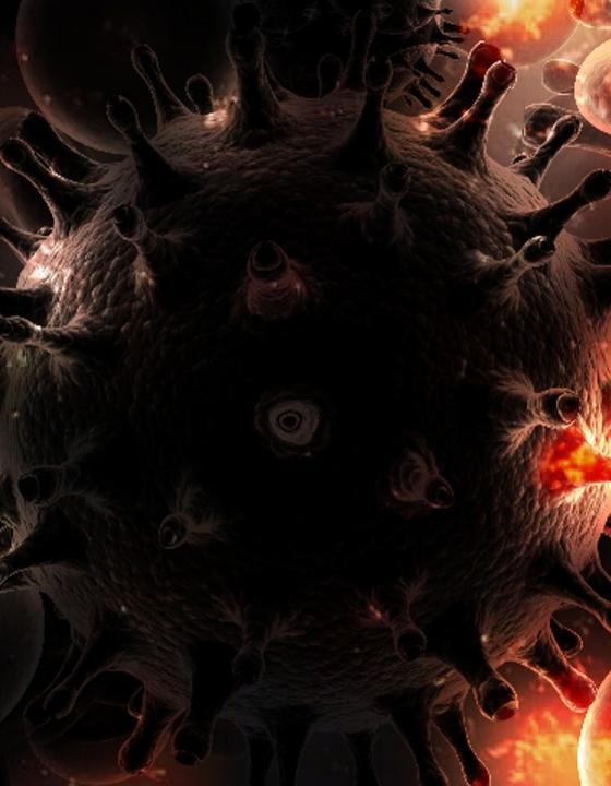 Neu entdeckter Virus reformiert Erkenntnisse über Erreger