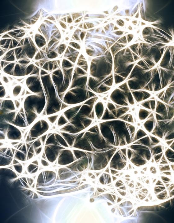 Durchbruch in der Alzheimer-Früherkennung: Wissenschaftler registrieren Krankheit 14 Jahre vorher
