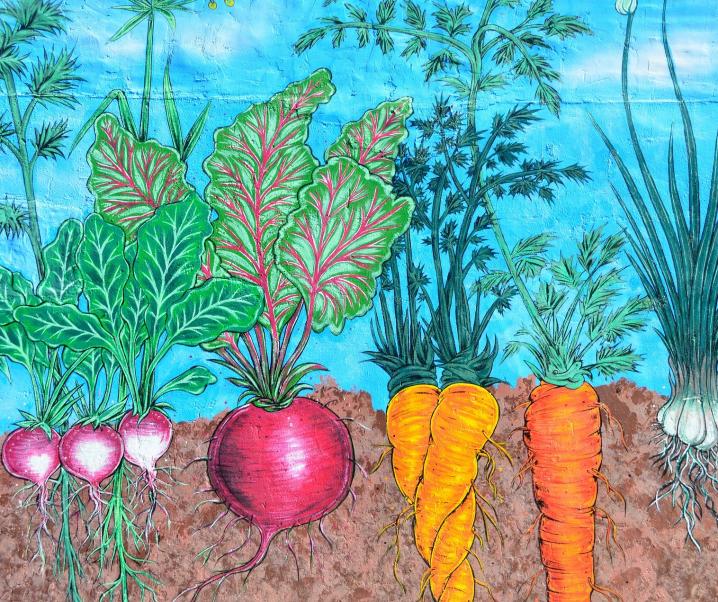 Diese Gemüseart wirkt Frühgeburten entgegen