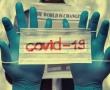 Tatsächlich: Antikörper von Lamas sollen Covid-19 heilen