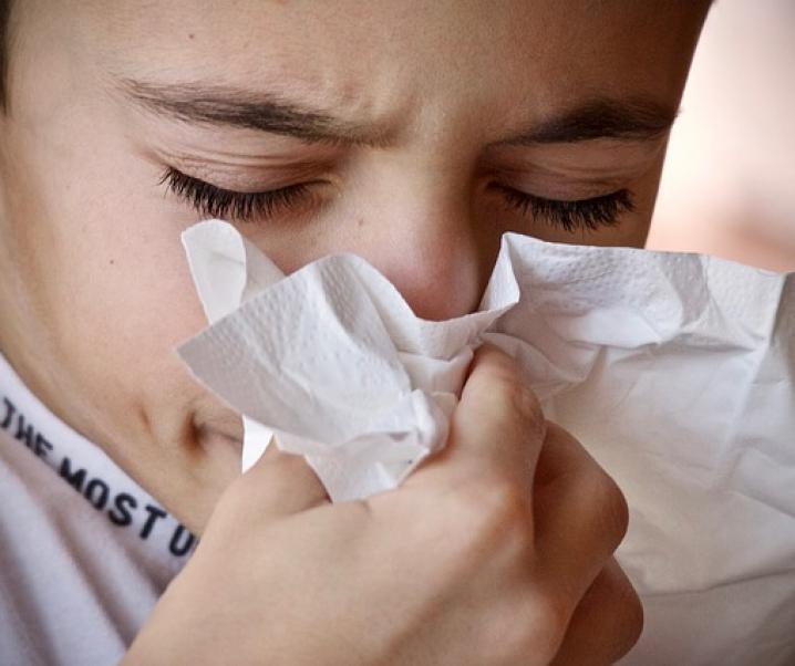 Wie Hausstaubmilben Allergien auslösen