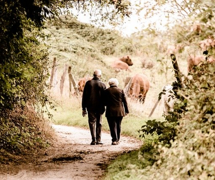 Spaziergänge: Eine Wohltat für Körper und Seele