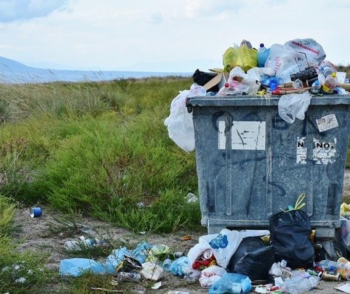 Sinn und Verstand gefragt: Umweltzerstörung erhöht das Risiko künftiger Pandemien