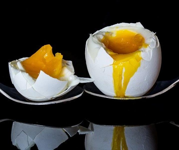Proteine – Wie viel Eiweiß ist gut für den Körper?