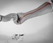Giftiger Reis? Bedenkliche Arsen-Belastung entdeckt