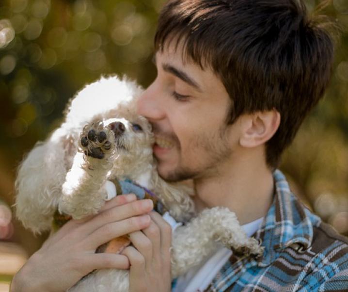 Coronavirus: Menschen steckten Haustiere an