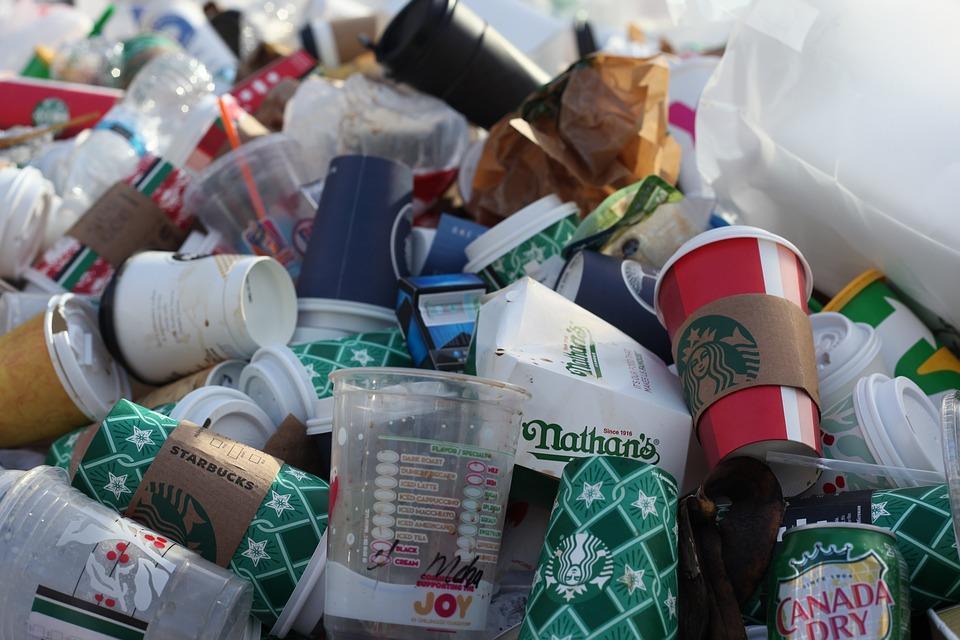 Plastik im Körper: Ist Mikroplastik gesundheitsschädlich?