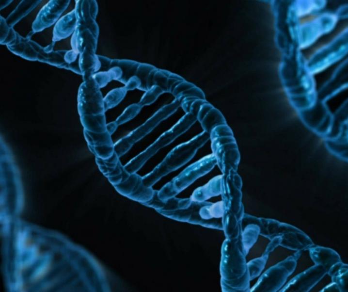 Neuentdeckung: Mutiertes Gen erhöht Krebsrisiko