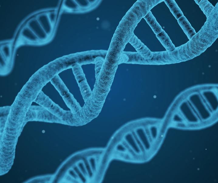 Diese fünf Gene entscheiden über den Verlauf von Covid-19