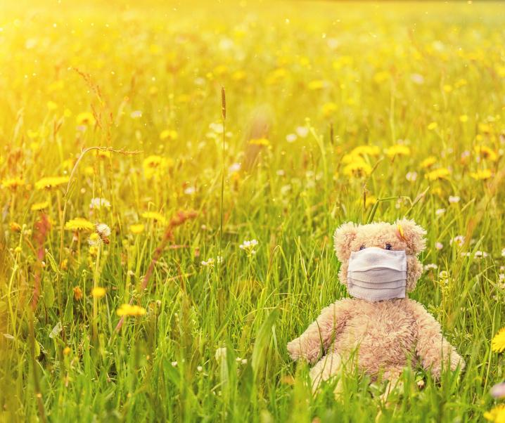 Covid-19: Kann der Frühling die Infektionszahl verringern?