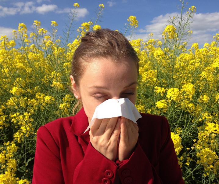 Die positive Seite von Allergien: Schutzfunktion vor bakteriellen Infektionen