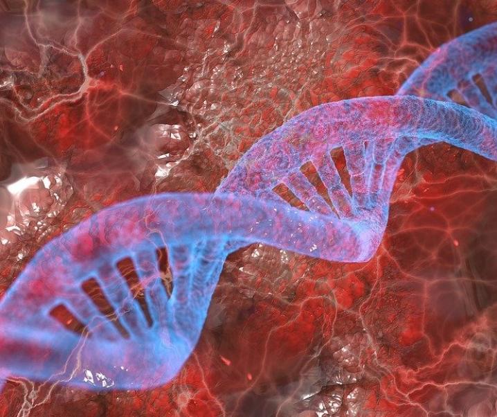 Genetische Erkrankungen heilen dank Antisense-Therapie?