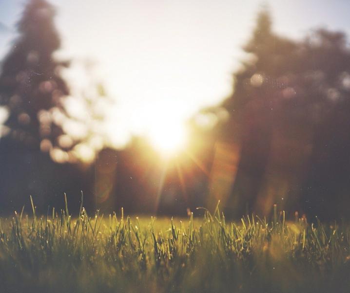 Covid-19: Schutz durch Sonnenlicht?