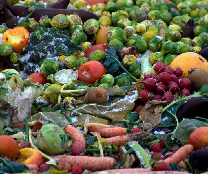 Verdorbene Lebensmittel: Auf was Sie besonders achten sollten