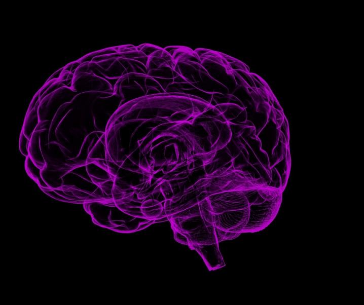 Alles Kopfsache? Placebo- und Nocebo-Effekt verursachen unterschiedliche Hirnaktivität