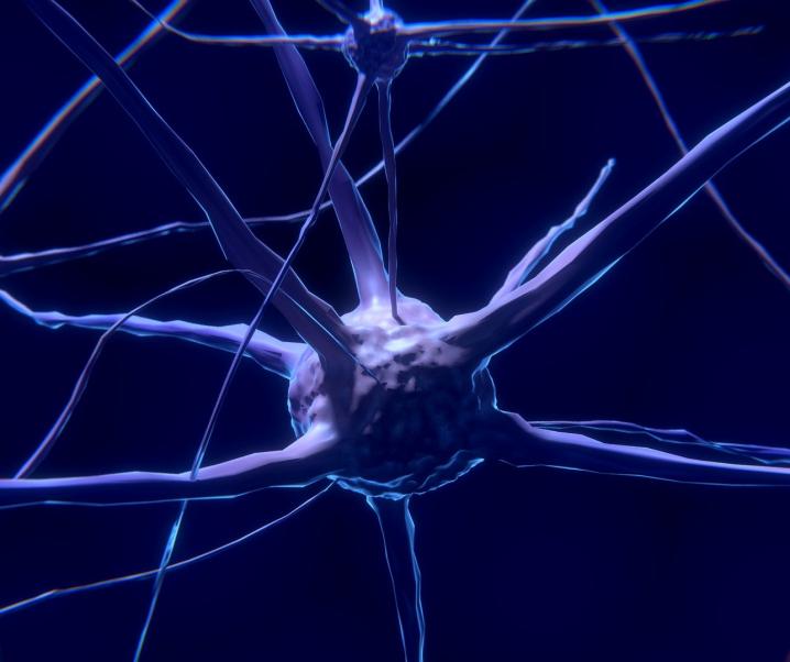 Durchbruch für die Epilepsieforschung: Künstliche Neuronen erkennen Biosignale in Echtzeit