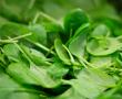 Pflanzliche Ernährung zum Umweltschutz: Was bringt sie wirklich?