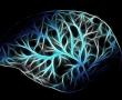 Karzinome mit ihren eigenen Waffen schlagen: Personalisierte Medizin revolutioniert Krebs-Therapie