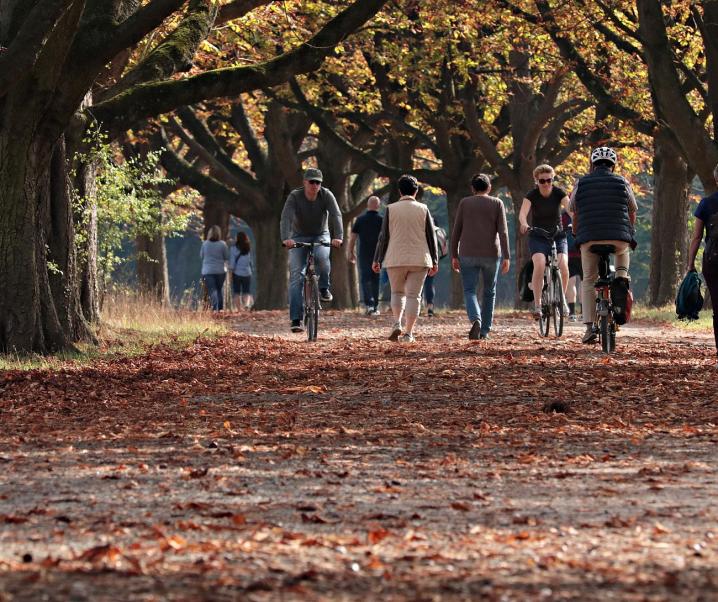 Wie regelmäßige Spaziergänge unserer Gesundheit gut tun