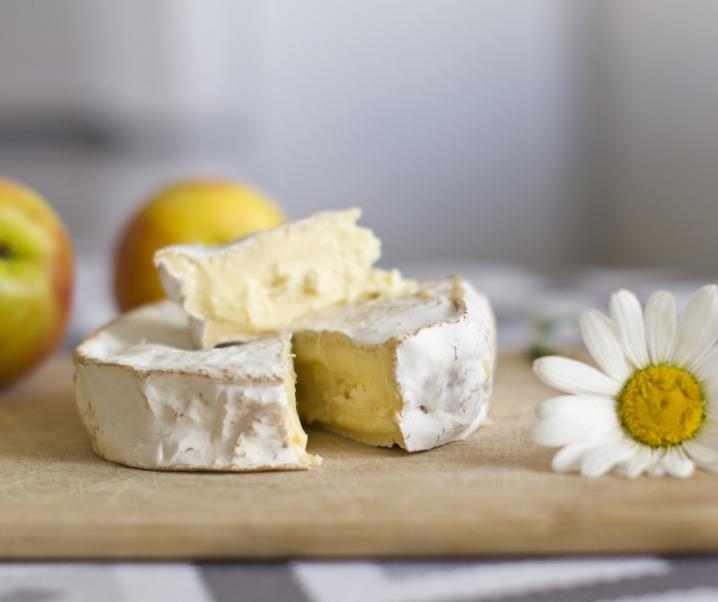 Kolibakterien in beliebter Käsesorte entdeckt