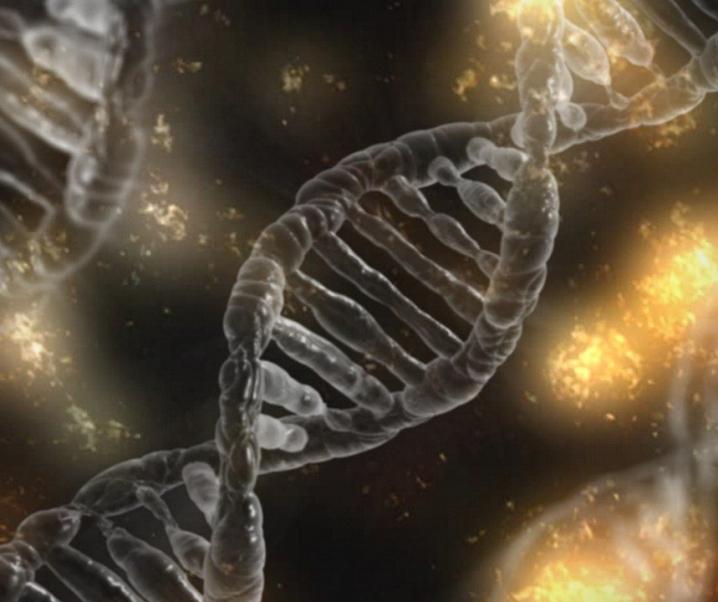 Alles vorherbestimmt? Dieses Gen triggert einen schweren Covid-19-Verlauf und Alzheimer